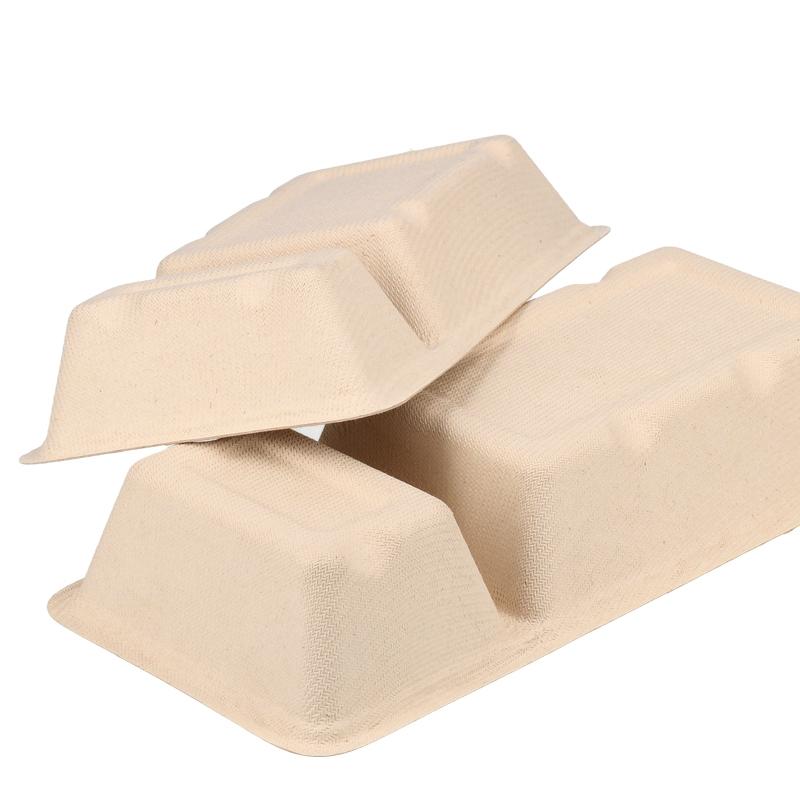 BIO Zuckerrohr Pommesschalen