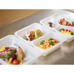 BIO meal tray 2 compartments 227x178x50mm