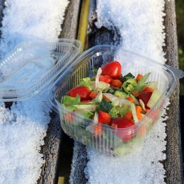 Salad container with hinged lid 375ml - square