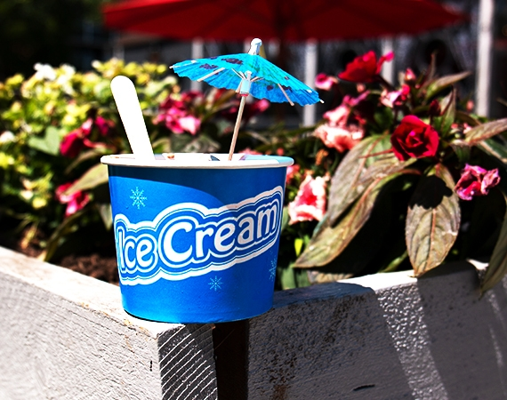 Celebrate the 